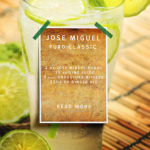 drink recipe white spirits brandy pisco jose miguel puro